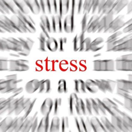 Lo Stress ed il suo prezzo