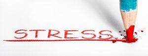 stress-s5